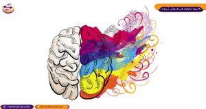 مغز پیچیده انسان