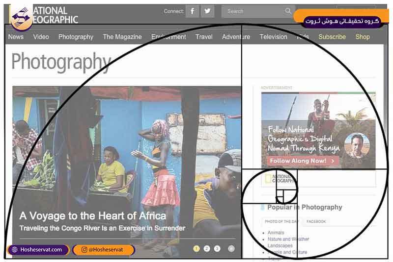 فیبو در طراحی سایت